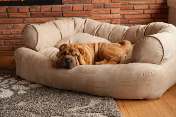Snoozer Pet Products - Overstuffed Sofa Hondenbed - Peat (Snoozer Pet Products)-0