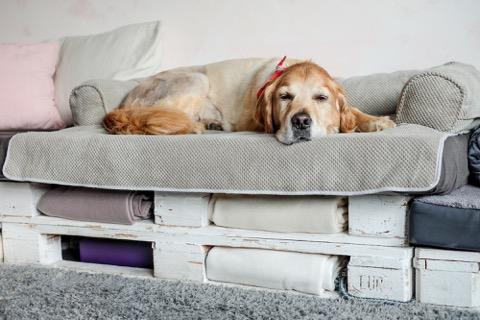 Bolstered Sofa Throw - Hondenbed voor op de bank - Storm-1762