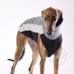 DG Outdoor Fleece Top Shirt-2281