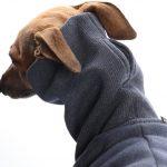 DG Outdoor Sweatshirt-2296