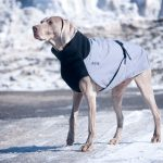 Chilly Dogs - Great White North -Warme hondenjas - Smalle hondenrassen-2395