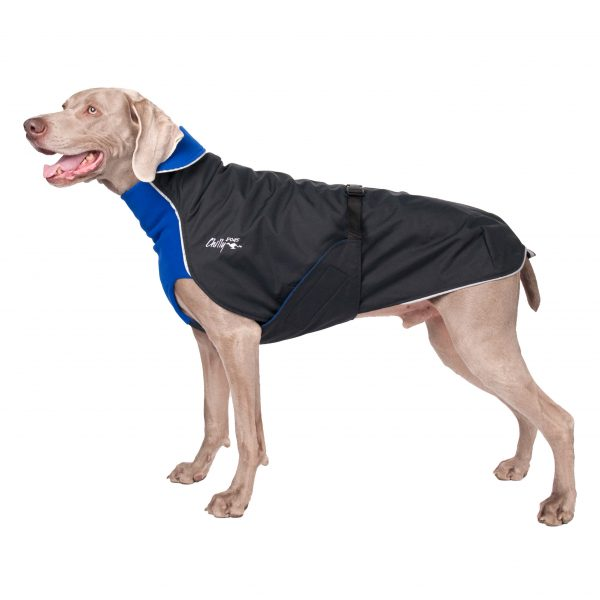 Chilly Dogs - Alpine Blazer - Waterdichte hondenjas - Alle hondenrassen-2415