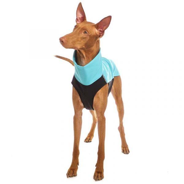 Sofa Dog - Hachico 02 - Waterproof Softshell Body-2523