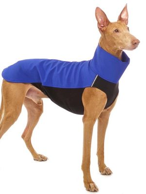 Sofa Dog - Hachico 02 - Waterproof Softshell Body-0
