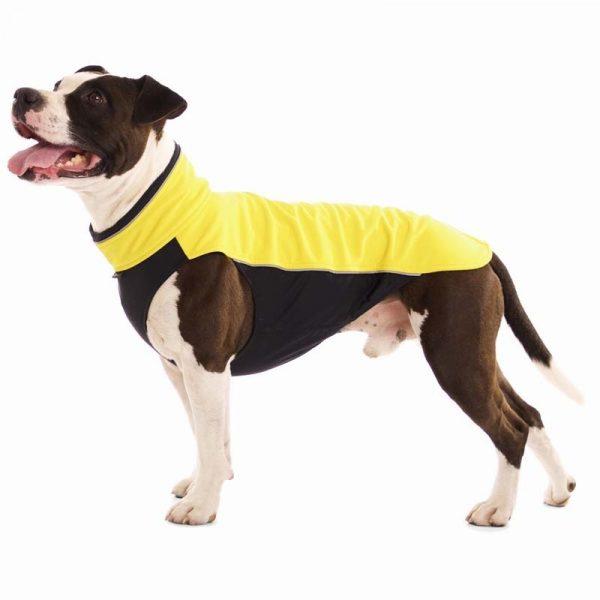 Sofa Dog - Hachico Bull - Waterproof Softshell Body-0