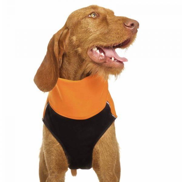 Sofa Dog - Hachico 02 - Waterproof Softshell Body-2501