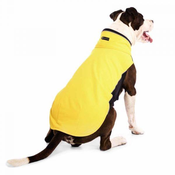 Sofa Dog - Hachico Bull - Waterproof Softshell Body-2484