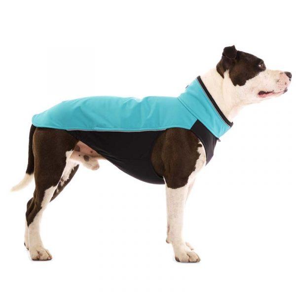 Sofa Dog - Hachico Bull - Waterproof Softshell Body-2485