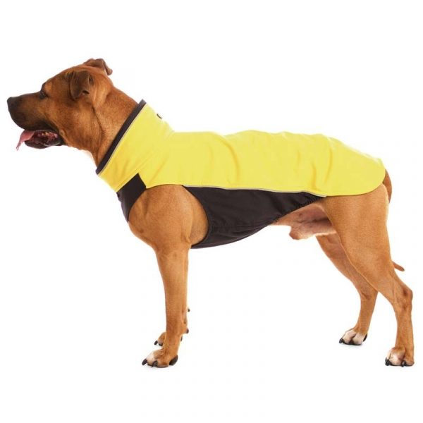 Sofa Dog - Hachico Bull - Waterproof Softshell Body-2487