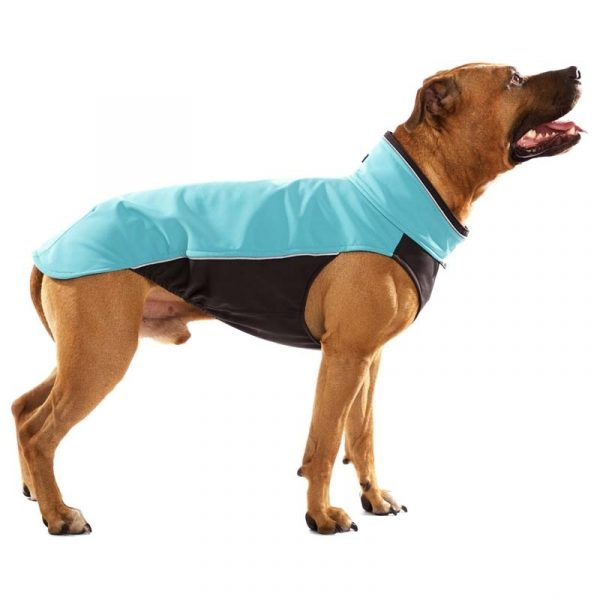 Sofa Dog - Hachico Bull - Waterproof Softshell Body-2489