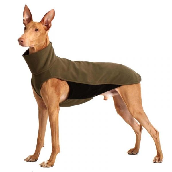 Sofa Dog - Hachico HOME - Fleece Body-0