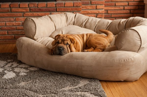 Snoozer Pet Products - Overstuffed Sofa Hondenbed - Palmer Dove (Show Dog)-2786