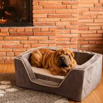 Snoozer Pet Products - Orthopedisch Vierkant Hondenbed met Memory Foam - Dark Chocolate-0