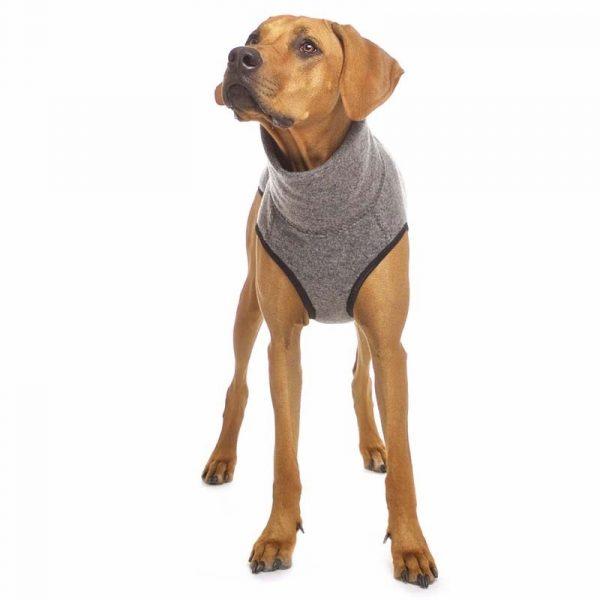 Sofa Dog - Hachico Jumper Exclusive - wollen trui-3522