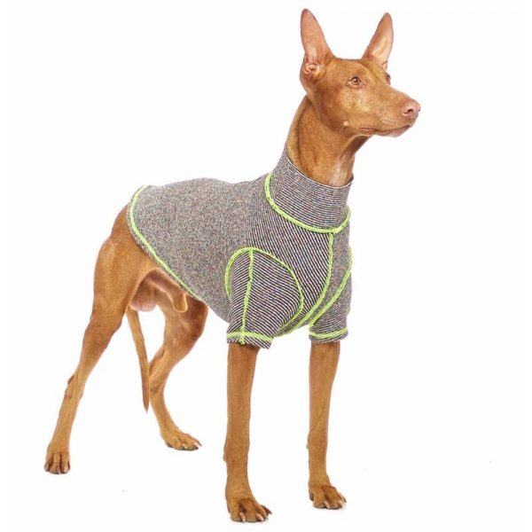 Sofa Dog - Bodie Forte - Onderhemd van stretch katoen-3577