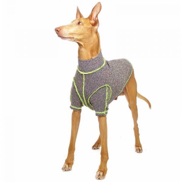 Sofa Dog - Bodie Forte - Onderhemd van stretch katoen-3578