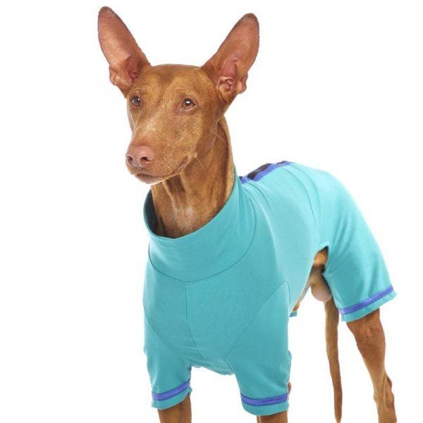 Sofa Dog -Oliver Plus-Z - Underwear met mouwen-3566