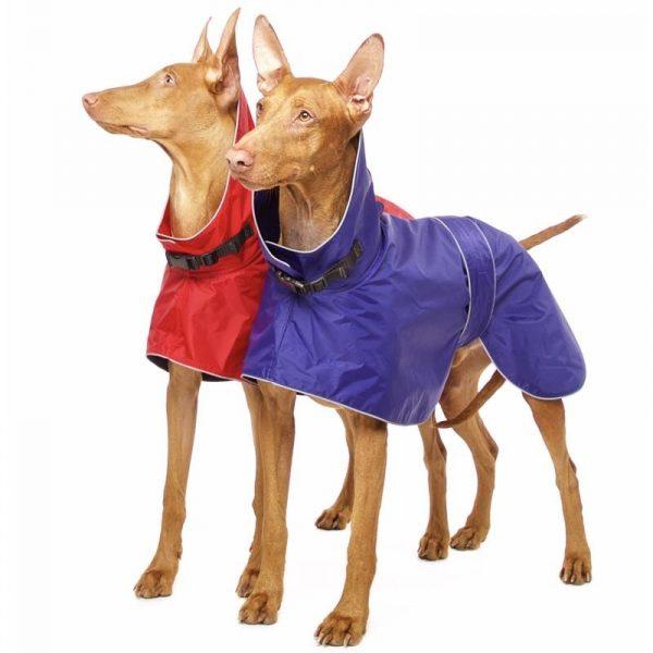 Sofa Dog - Zoe - Waterdichte regenjas-3625