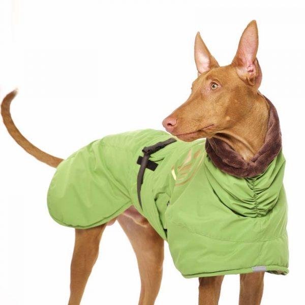 Sofa Dog - Anubis - Warme Winterjas-3706