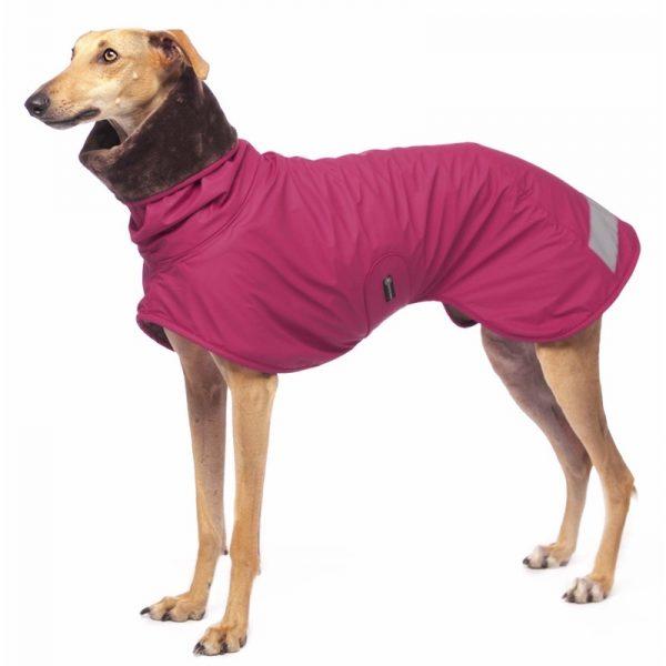 Sofa Dog - Michael Coolrain - Warme regenjas-3668