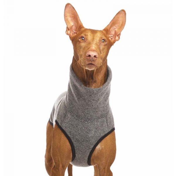 Sofa Dog - Hachico Jumper Exclusive - wollen trui-3528