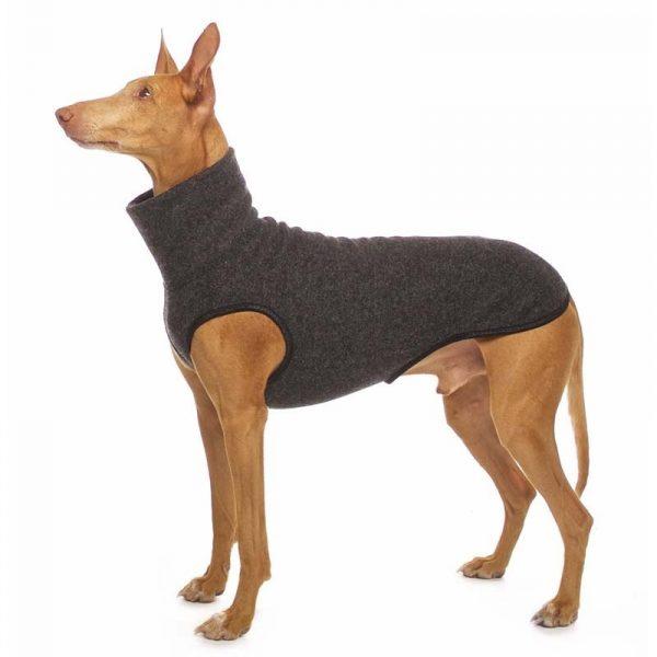 Sofa Dog - Hachico Jumper Exclusive - wollen trui-3529