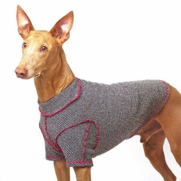 Sofa Dog - Bodie Forte - Onderhemd van stretch katoen-3583