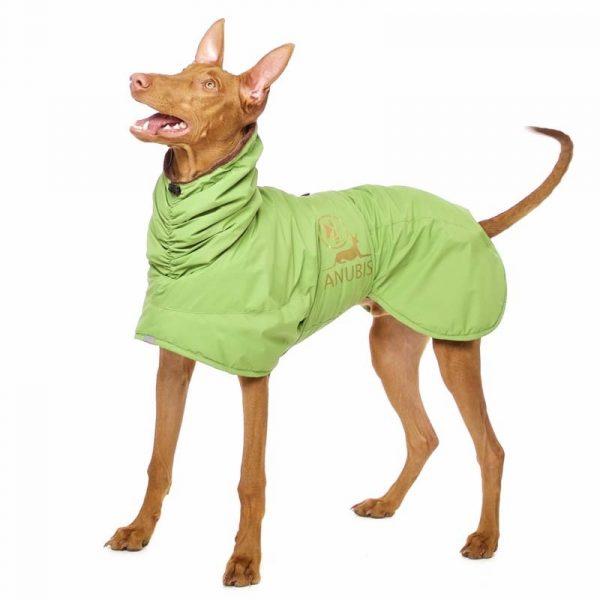 Sofa Dog - Anubis - Warme Winterjas-3712