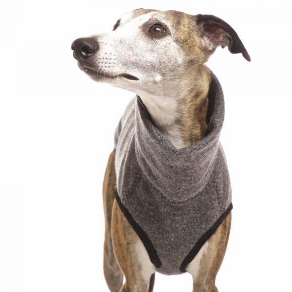 Sofa Dog - Hachico Jumper Exclusive - wollen trui-3530