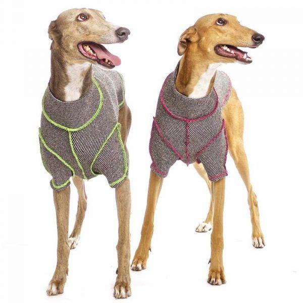 Sofa Dog - Bodie Forte - Onderhemd van stretch katoen-3584