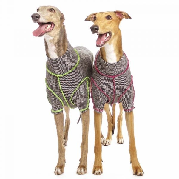 Sofa Dog - Bodie Forte - Onderhemd van stretch katoen-3586