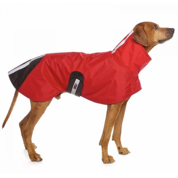 Sofa Dog - Michael RR Rain - Waterdichte regenjas-3393