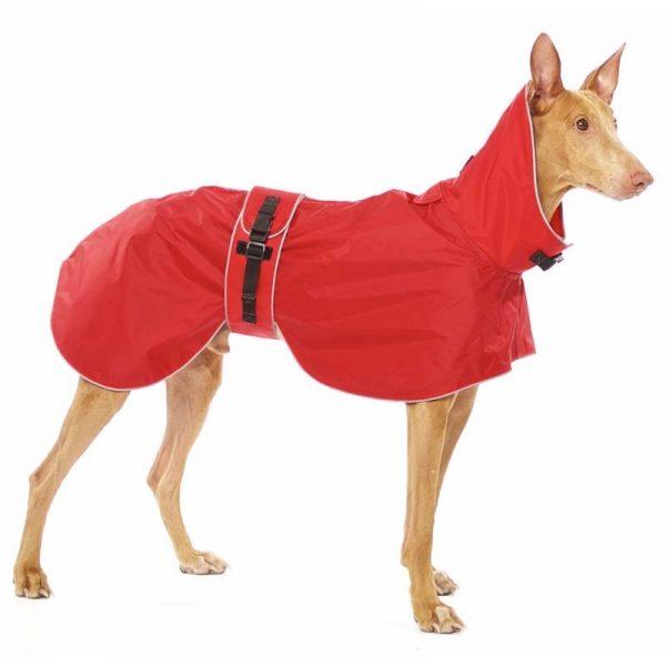 Sofa Dog - Zoe - Waterdichte regenjas-3616