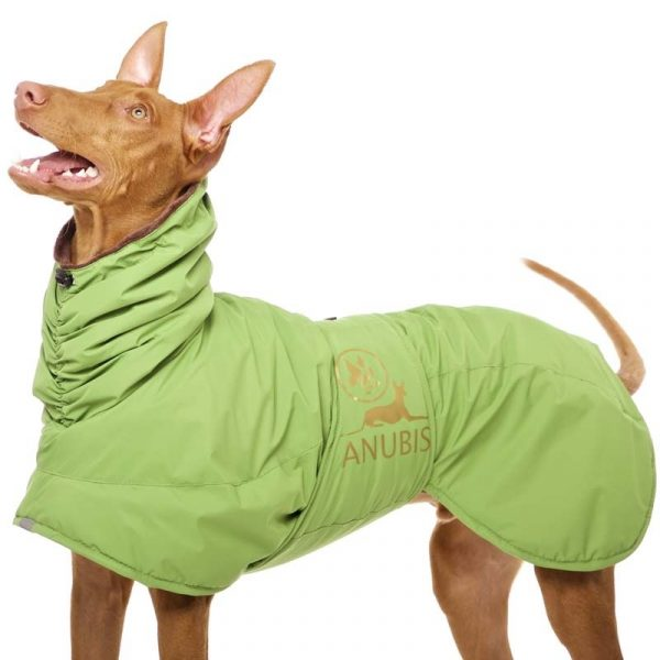 Sofa Dog - Anubis - Warme Winterjas-3696