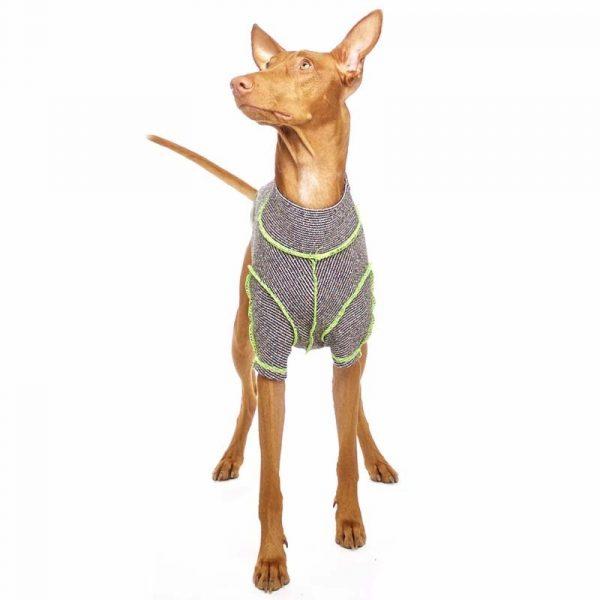 Sofa Dog - Bodie Forte - Onderhemd van stretch katoen-3587