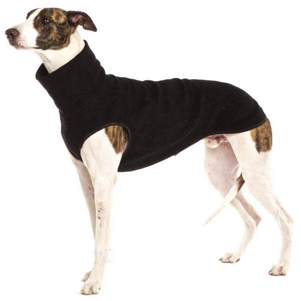 Sofa Dog - Hachico Jumper Exclusive - wollen trui-3533