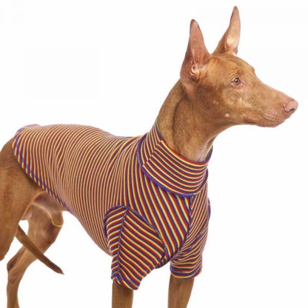Sofa Dog - Bodie Forte - Onderhemd van stretch katoen-3589