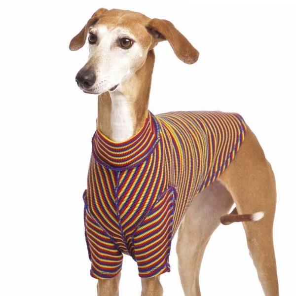 Sofa Dog - Bodie Forte - Onderhemd van stretch katoen-3591
