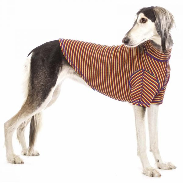 Sofa Dog - Bodie Forte - Onderhemd van stretch katoen-3594