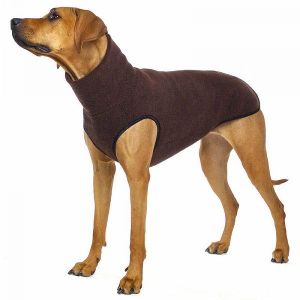 Sofa Dog - Hachico Jumper Exclusive - wollen trui-3540