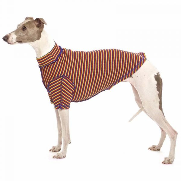 Sofa Dog - Bodie Forte - Onderhemd van stretch katoen-3595