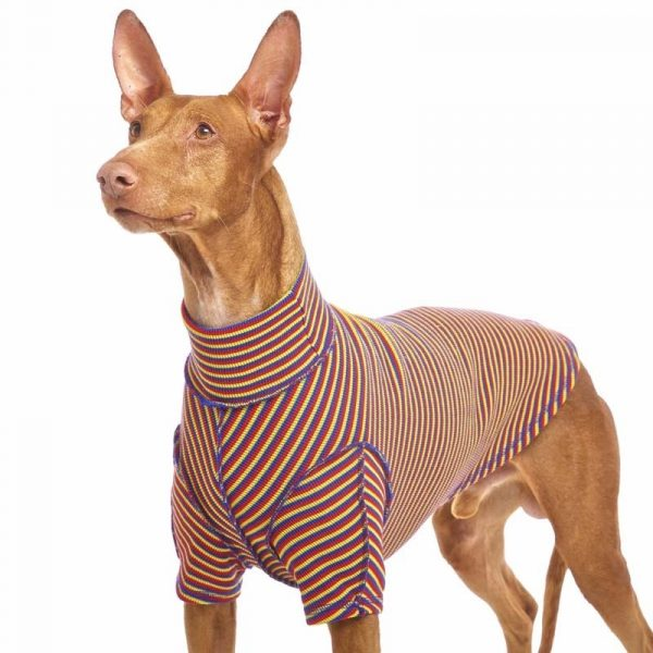 Sofa Dog - Bodie Forte - Onderhemd van stretch katoen-3596