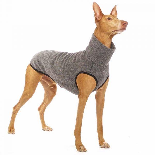 Sofa Dog - Hachico Jumper Exclusive - wollen trui-3513
