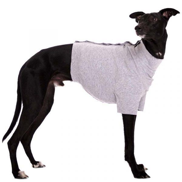 Sofa Dog - Oliver - Katoen underwear-3549