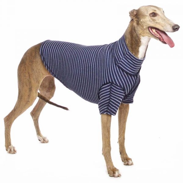 Sofa Dog - Bodie Forte - Onderhemd van stretch katoen-3569