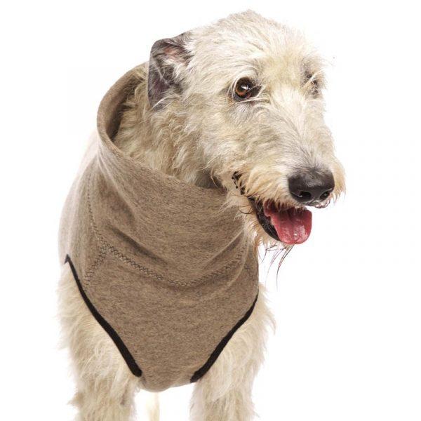 Sofa Dog - Hachico Jumper Exclusive - wollen trui-3542