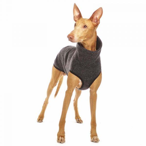 Sofa Dog - Hachico Jumper Exclusive - wollen trui-3514