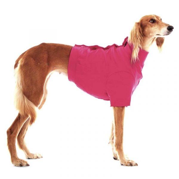 Sofa Dog - Oliver - Katoen underwear-3547