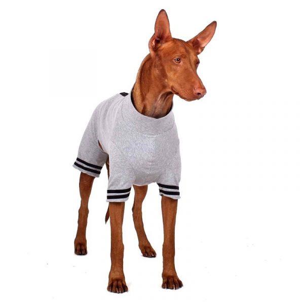 Sofa Dog -Oliver Plus-Z - Underwear met mouwen-3557