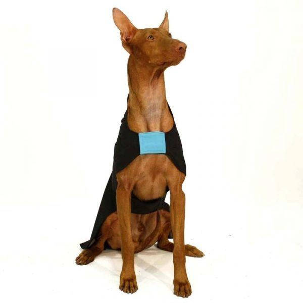 Sofa Dog - Miguel - Softshell jas-3737